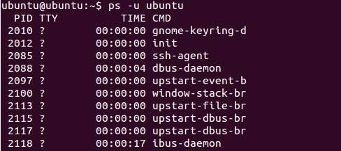 ps command in linux / ubuntu | ps -u