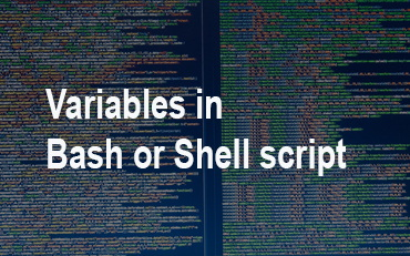 Variables in Bash and Shell script